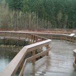 Holzbrücke im Regen